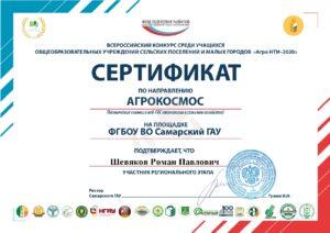 Сертификат Шевяков Роман