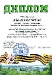 Диплом Краснощеков Е.
