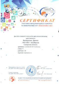 Сертификат Халиуллин Данил